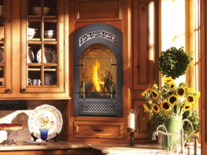 FireplaceXtrodinair - 21 TRV GS Fireplace